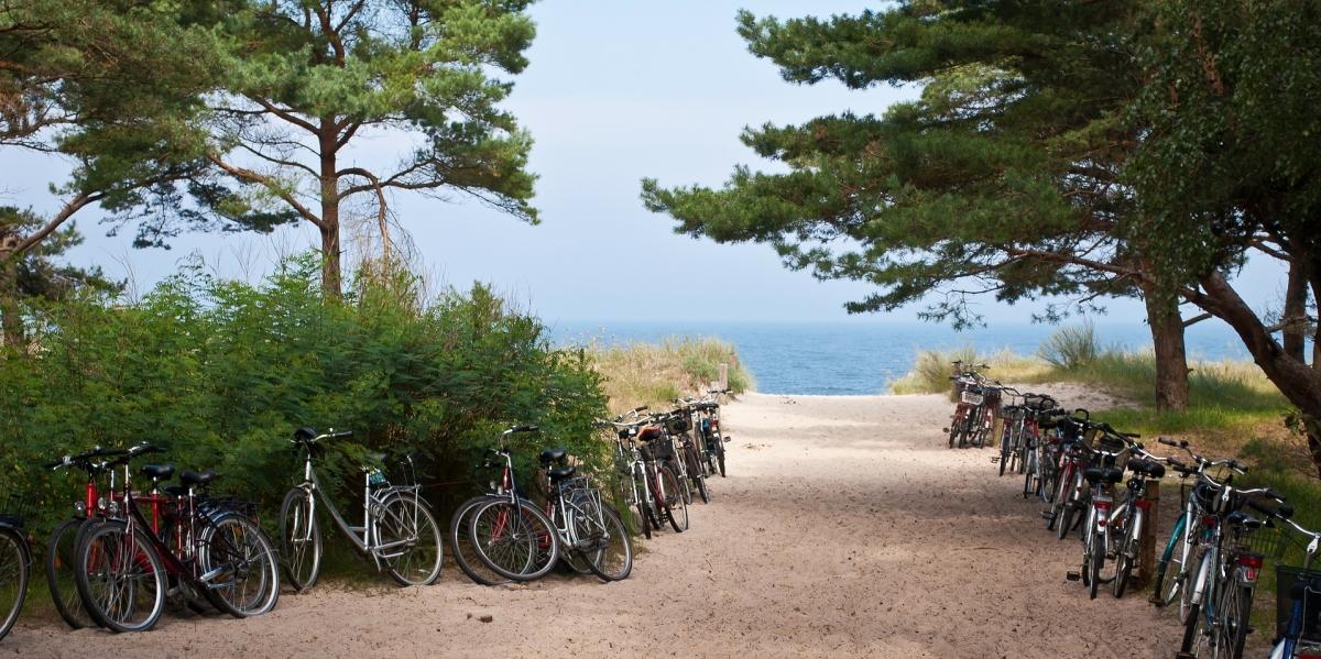 noleggio biciclette Orbetello