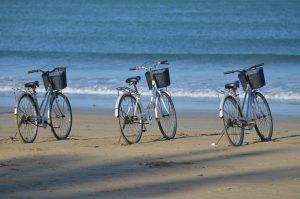 vendita biciclette orbetello